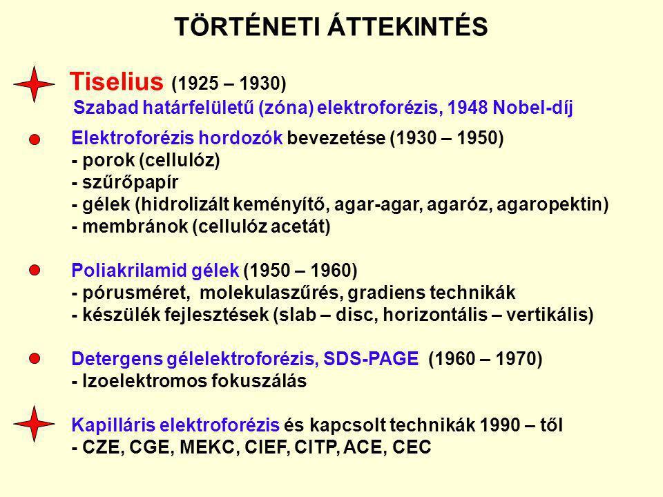 TÖRTÉNETI ÁTTEKINTÉS Tiselius (1925 – 1930) Szabad határfelületű (zóna) elektroforézis, 1948 Nobel-díj Elektroforézis hordozók bevezetése (1930 – 1950