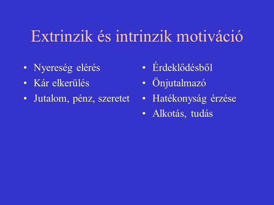 Extrinzik és intrinzik motiváció Nyereség elérés Kár elkerülés Jutalom, pénz, szeretet Érdeklődésből Önjutalmazó Hatékonyság érzése Alkotás, tudás