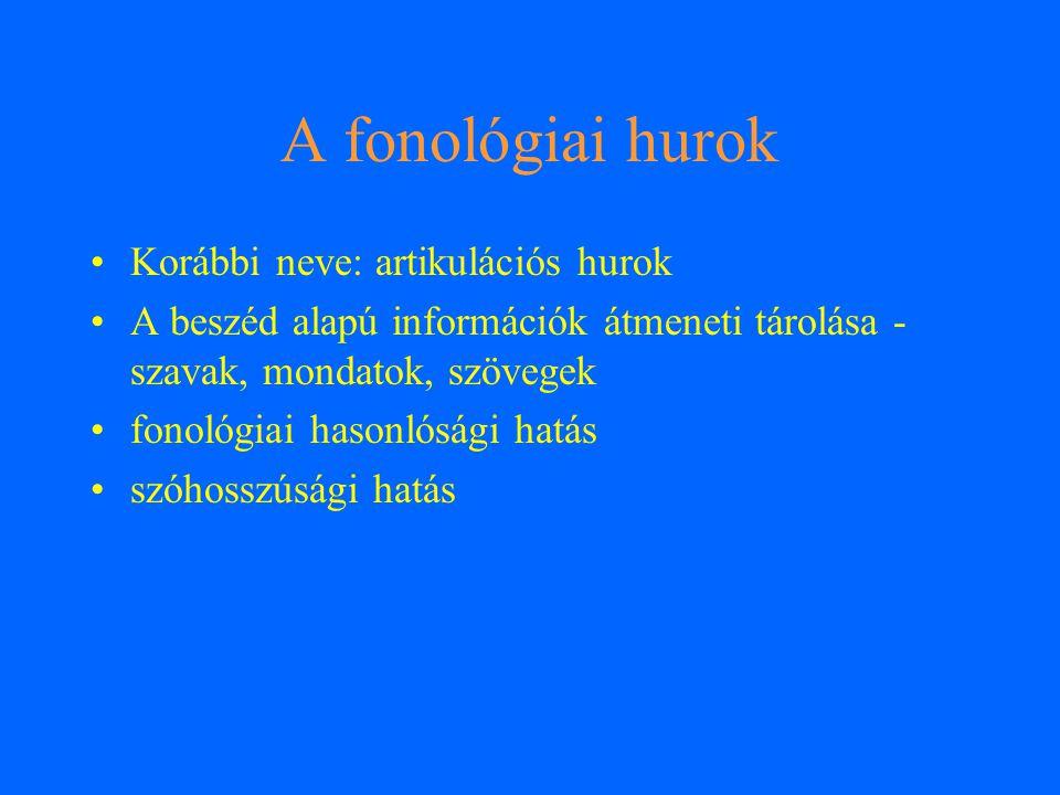 A fonológiai hurok Korábbi neve: artikulációs hurok A beszéd alapú információk átmeneti tárolása - szavak, mondatok, szövegek fonológiai hasonlósági h