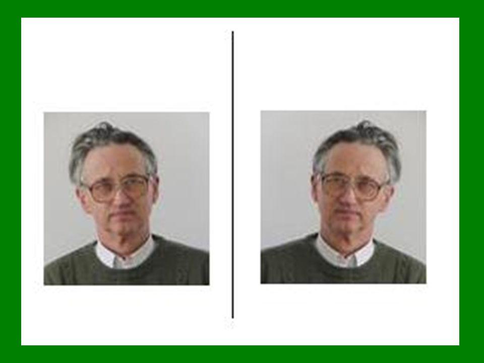 """A síkban:  Kijelöli 4 """"pont : O, X, Y, E  Pontok: P = (x, y) T = (x) (y)  kétféle irányítása: jobbsodrású (jobbos, jobbkezes), X tengely  Y tengely: CCLW balsodrású (balos, balkezes)"""