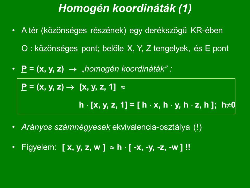 """Homogén koordináták (1) A tér (közönséges részének) egy derékszögű KR-ében O : közönséges pont; belőle X, Y, Z tengelyek, és E pont P = (x, y, z)  """"h"""