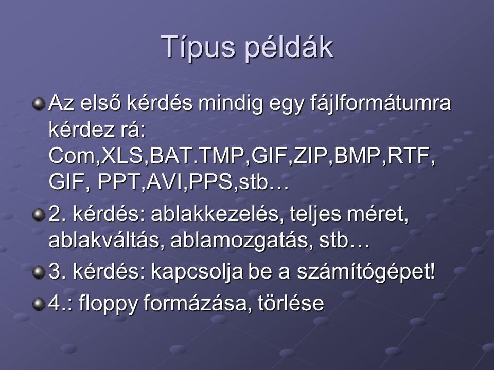 Típus példák Az első kérdés mindig egy fájlformátumra kérdez rá: Com,XLS,BAT.TMP,GIF,ZIP,BMP,RTF, GIF, PPT,AVI,PPS,stb… 2.