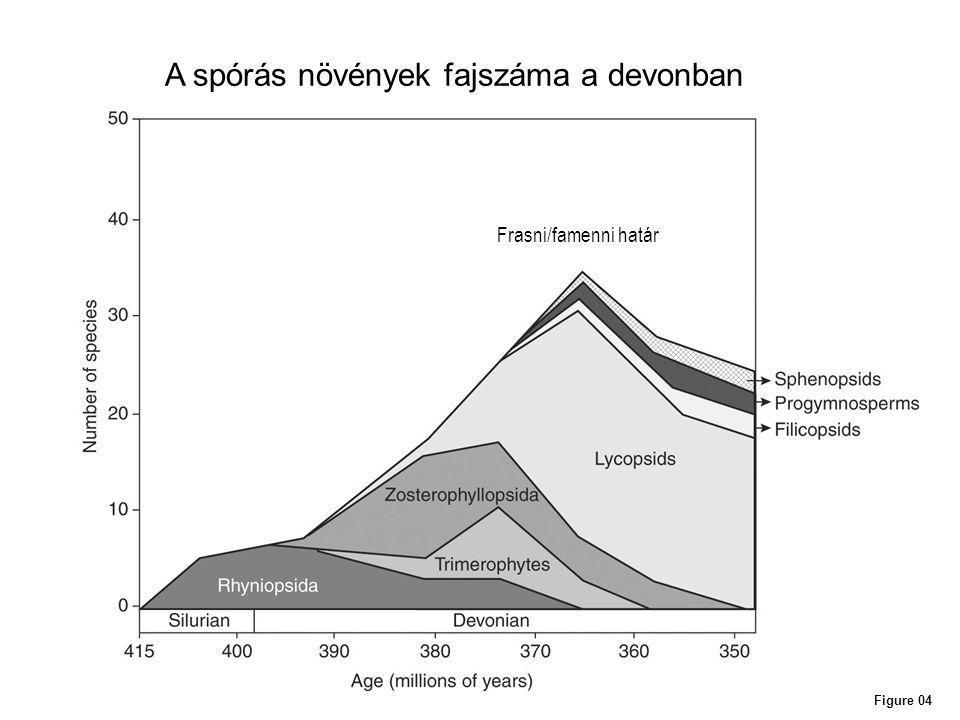 Figure 04 A spórás növények fajszáma a devonban Frasni/famenni határ