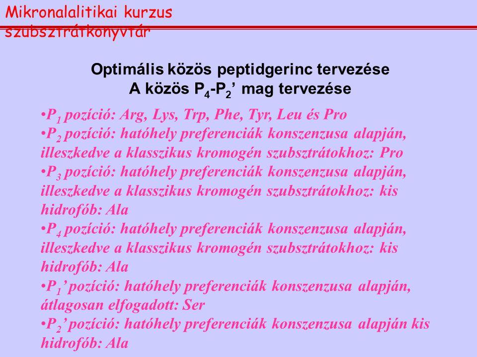 Optimális közös peptidgerinc tervezése A közös P 4 -P 2 ' mag tervezése P 1 pozíció: Arg, Lys, Trp, Phe, Tyr, Leu és Pro P 2 pozíció: hatóhely prefere