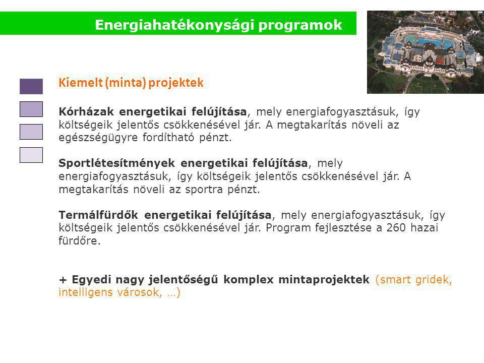 Energiahatékonysági programok Kiemelt (minta) projektek Kórházak energetikai felújítása, mely energiafogyasztásuk, így költségeik jelentős csökkenésével jár.