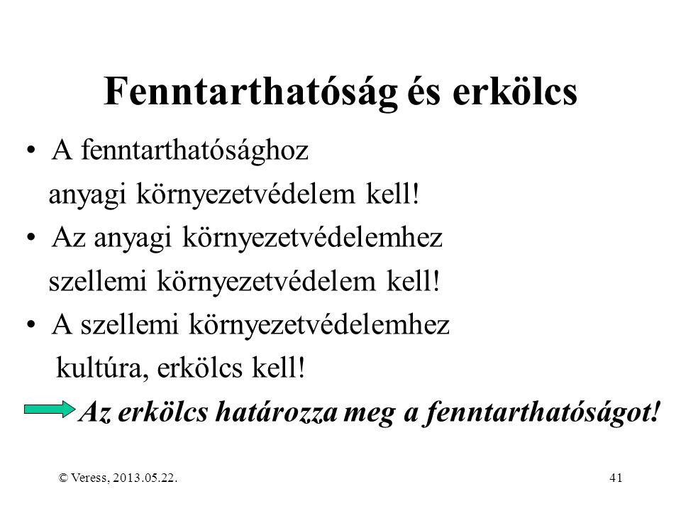 © Veress, 2013.05.22.41 Fenntarthatóság és erkölcs A fenntarthatósághoz anyagi környezetvédelem kell.