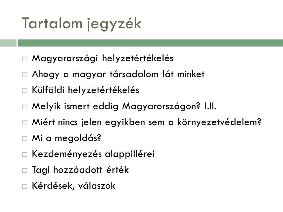 Tartalom jegyzék  Magyarországi helyzetértékelés  Ahogy a magyar társadalom lát minket  Külföldi helyzetértékelés  Melyik ismert eddig Magyarországon.