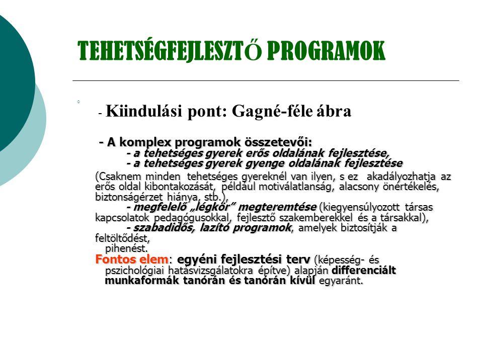 TEHETSÉGFEJLESZT Ő PROGRAMOK  - Kiindulási pont: Gagné-féle ábra - A komplex programok összetevői: - a tehetséges gyerek erős oldalának fejlesztése,