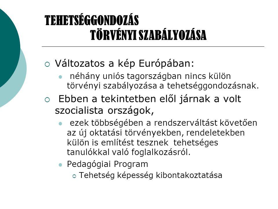  - A tehetség fejlesztését és hasznosulását segítő környezet kialakítására  - Kiadvány megjelentetése a tehetségről, a tehetség felismeréséről és segítéséről, a Nemzeti Tehetség Programról,  - A sikeres magyar tehetségsegítő programok és megoldások idegen nyelveken való folyamatos megjelenítésének támogatására.