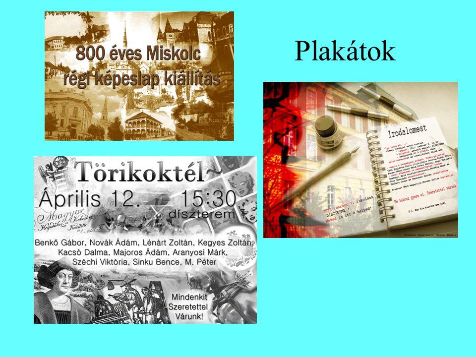 2011-es rendezvényeink - a Természettudományos Napokhoz kapcsolódóan 800 éves Miskolc régi képeslapokon című kiállítás - Irodalomest: (2011.02.02) 11 diákunk adta elő saját versét vagy prózáját, a felolvasást mozgásművészeti illetve három zenei betét színesítette.