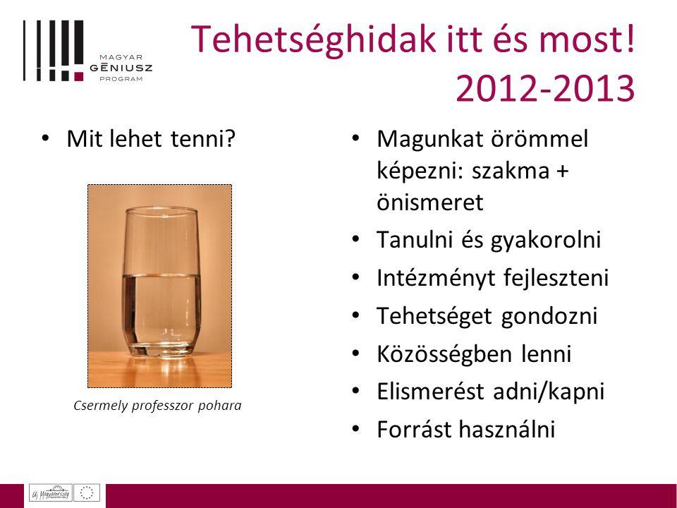 Tehetséghidak itt és most.2012-2013 Mit lehet tenni.