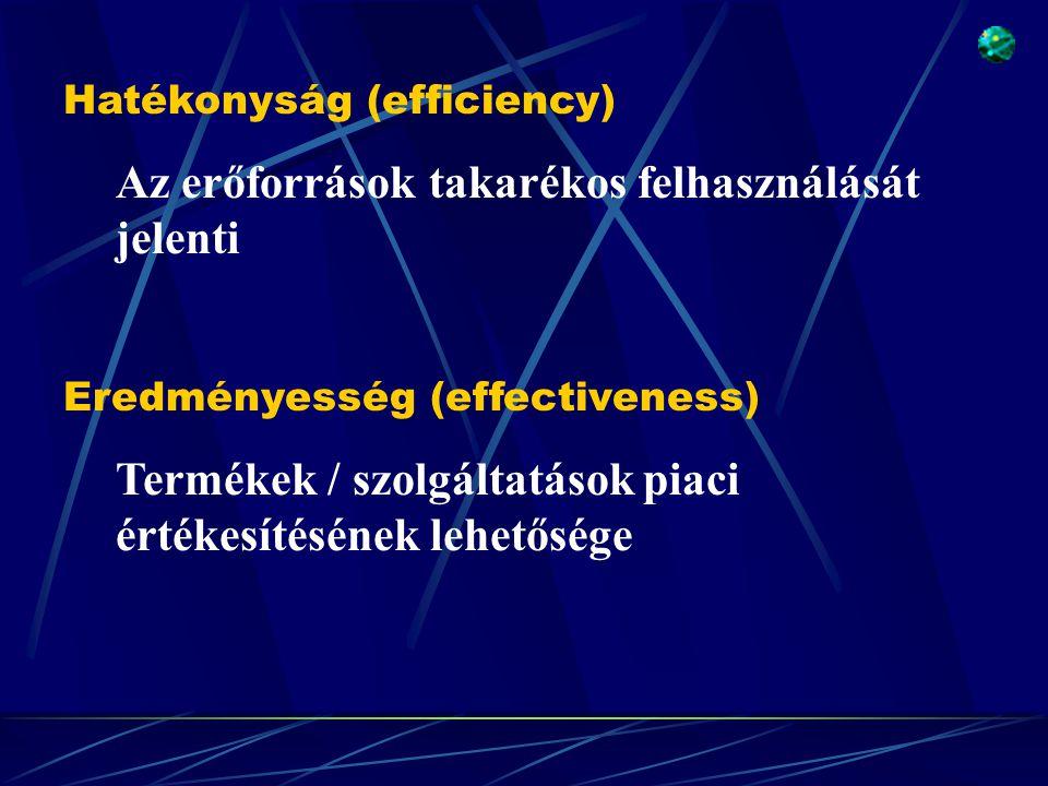Eredményesség (effectiveness) Termékek / szolgáltatások piaci értékesítésének lehetősége Hatékonyság (efficiency) Az erőforrások takarékos felhasználá