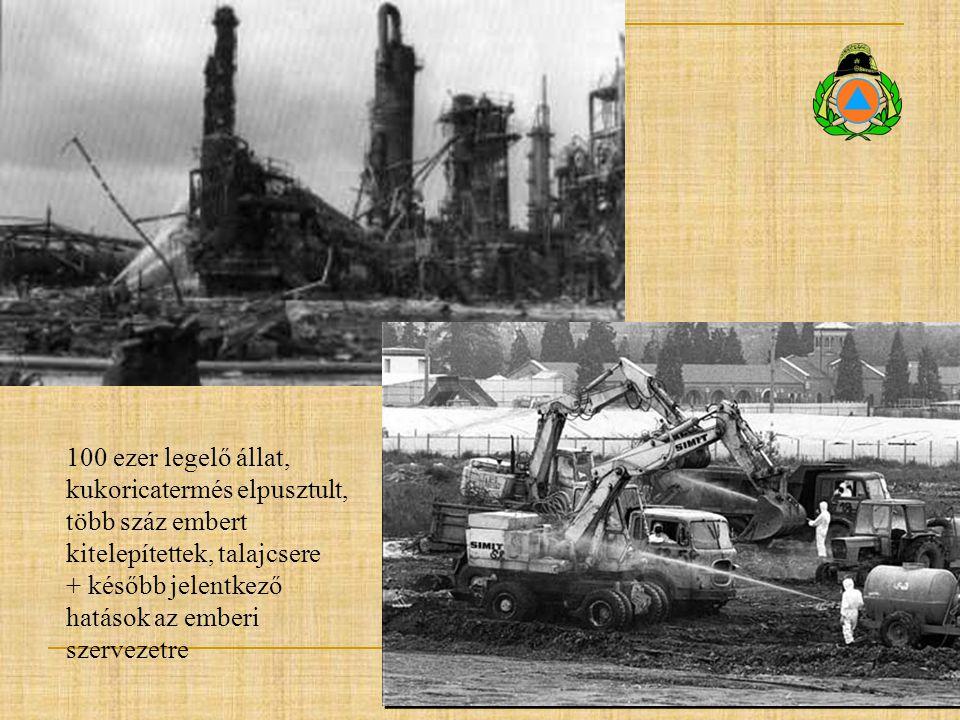 100 ezer legelő állat, kukoricatermés elpusztult, több száz embert kitelepítettek, talajcsere + később jelentkező hatások az emberi szervezetre