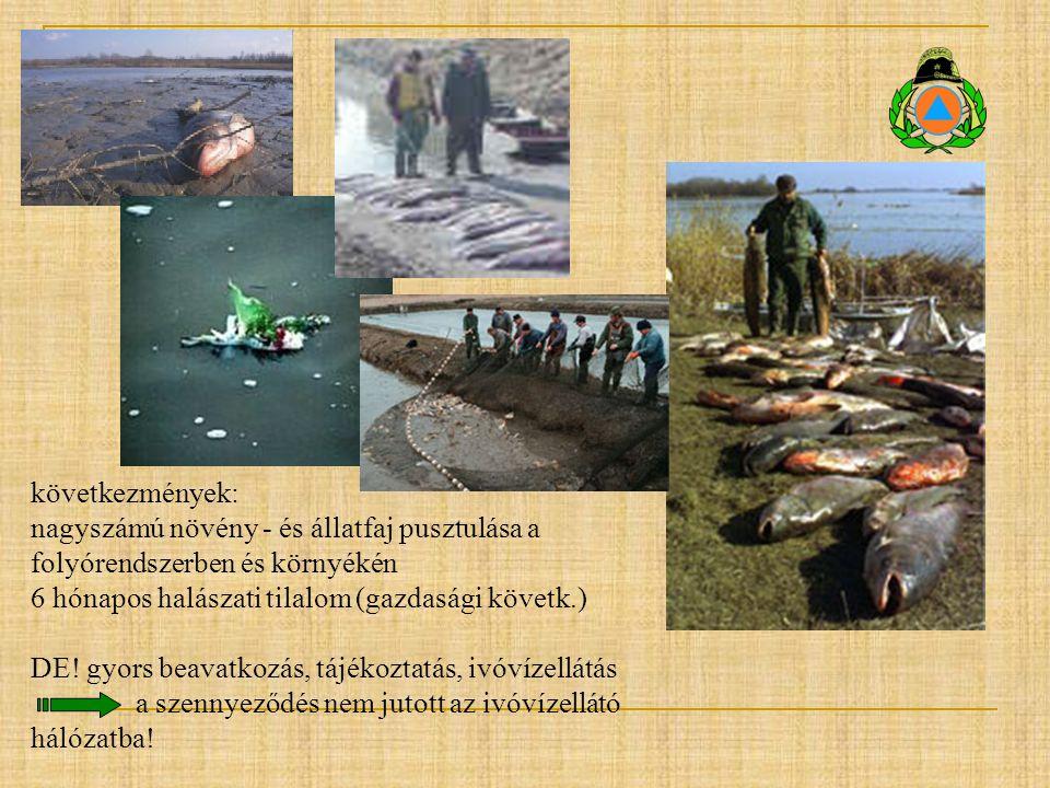 következmények: nagyszámú növény - és állatfaj pusztulása a folyórendszerben és környékén 6 hónapos halászati tilalom (gazdasági követk.) DE! gyors be
