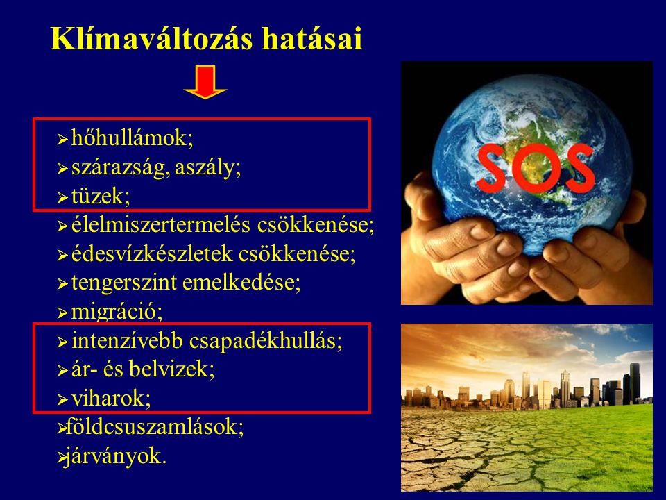 hőhullámok;  szárazság, aszály;  tüzek;  élelmiszertermelés csökkenése;  édesvízkészletek csökkenése;  tengerszint emelkedése;  migráció;  in