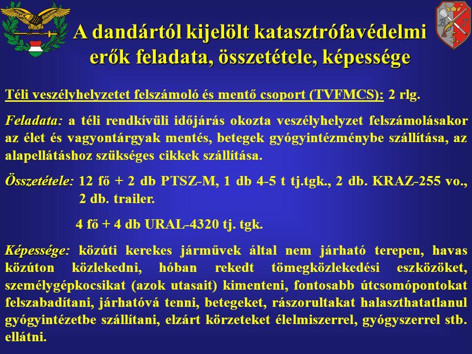 Téli veszélyhelyzetet felszámoló és mentő csoport (TVFMCS): 2 rlg.