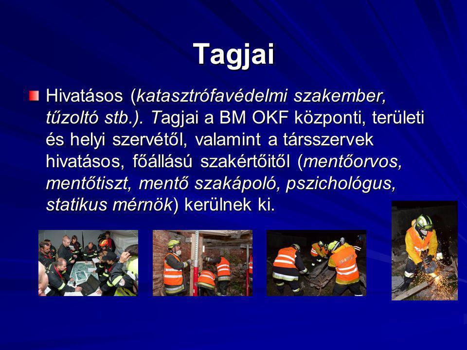 Tagjai Hivatásos (katasztrófavédelmi szakember, tűzoltó stb.).
