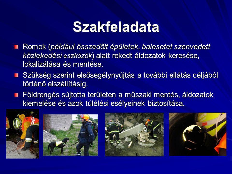 Szakfeladata Romok (például összedőlt épületek, balesetet szenvedett közlekedési eszközök ) alatt rekedt áldozatok keresése, lokalizálása és mentése.