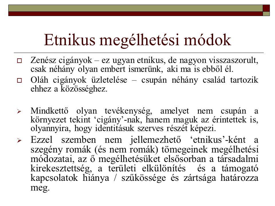 Etnikus megélhetési módok  Zenész cigányok – ez ugyan etnikus, de nagyon visszaszorult, csak néhány olyan embert ismerünk, aki ma is ebből él.  Oláh