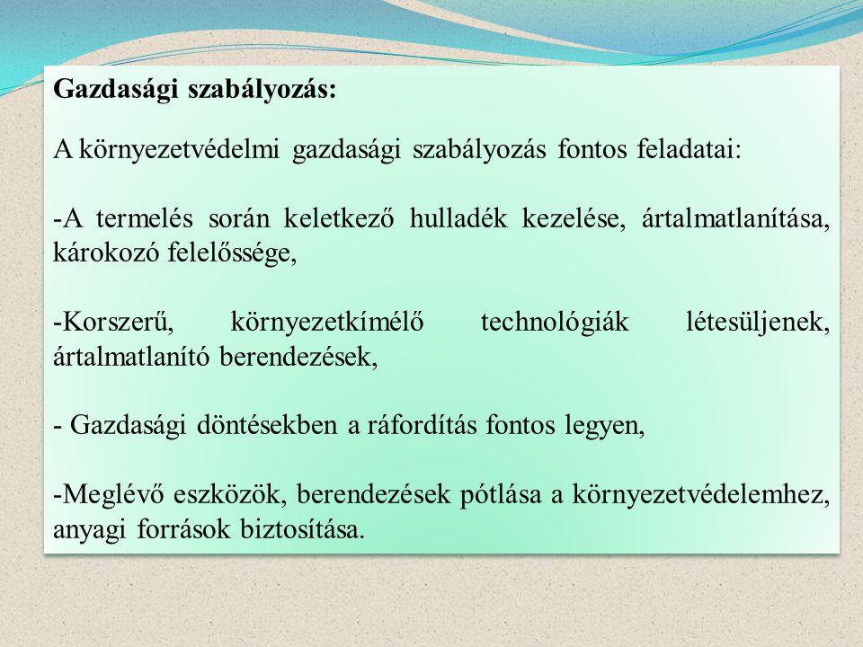 Gazdasági szabályozás: A környezetvédelmi gazdasági szabályozás fontos feladatai: -A termelés során keletkező hulladék kezelése, ártalmatlanítása, kár