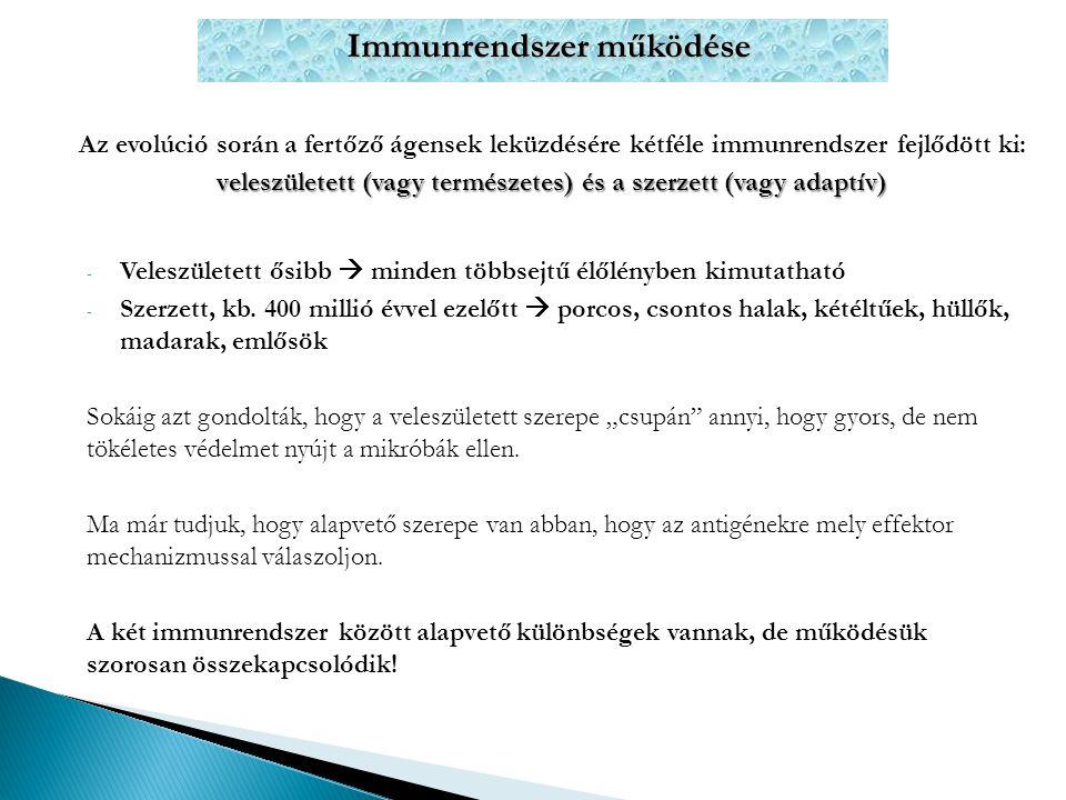 Immunrendszer működése Az evolúció során a fertőző ágensek leküzdésére kétféle immunrendszer fejlődött ki: veleszületett (vagy természetes) és a szerz