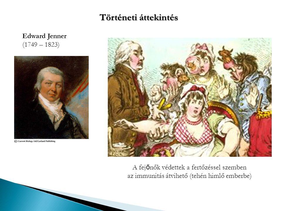 Edward Jenner (1749 – 1823) A fej ő nők védettek a fertőzéssel szemben az immunitás átvihető (tehén himlő emberbe) Történeti áttekintés