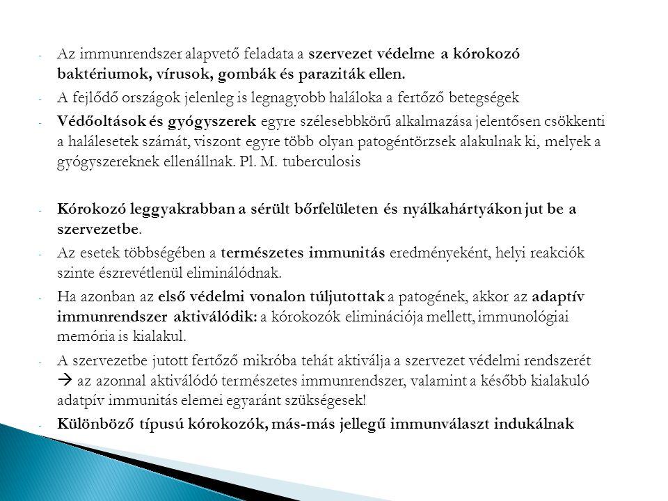 - Az immunrendszer alapvető feladata a szervezet védelme a kórokozó baktériumok, vírusok, gombák és paraziták ellen. - A fejlődő országok jelenleg is