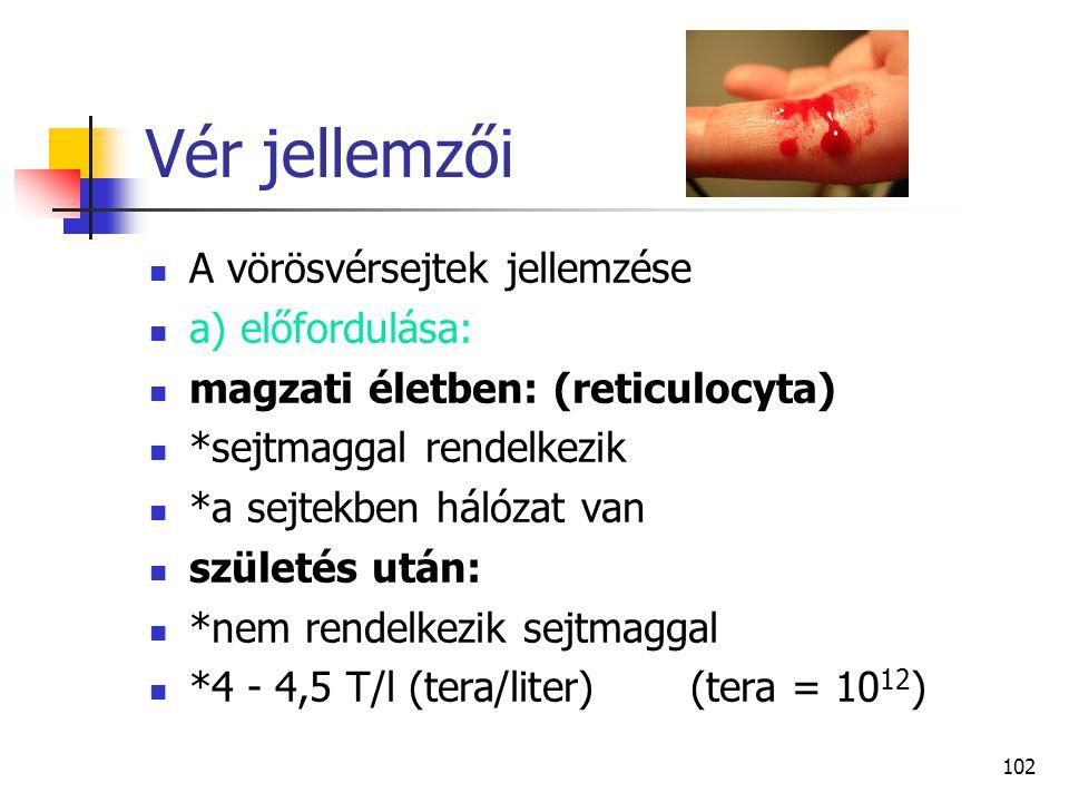 102 Vér jellemzői A vörösvérsejtek jellemzése a) előfordulása: magzati életben: (reticulocyta) *sejtmaggal rendelkezik *a sejtekben hálózat van szület