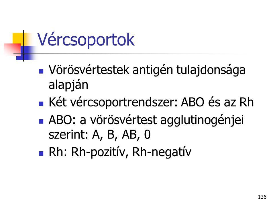 136 Vércsoportok Vörösvértestek antigén tulajdonsága alapján Két vércsoportrendszer: ABO és az Rh ABO: a vörösvértest agglutinogénjei szerint: A, B, A