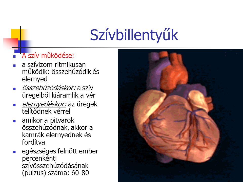 27 Szívbillentyűk A szív működése: a szívizom ritmikusan működik: összehúzódik és elernyed összehúzódáskor: a szív üregeiből kiáramlik a vér elernyedé