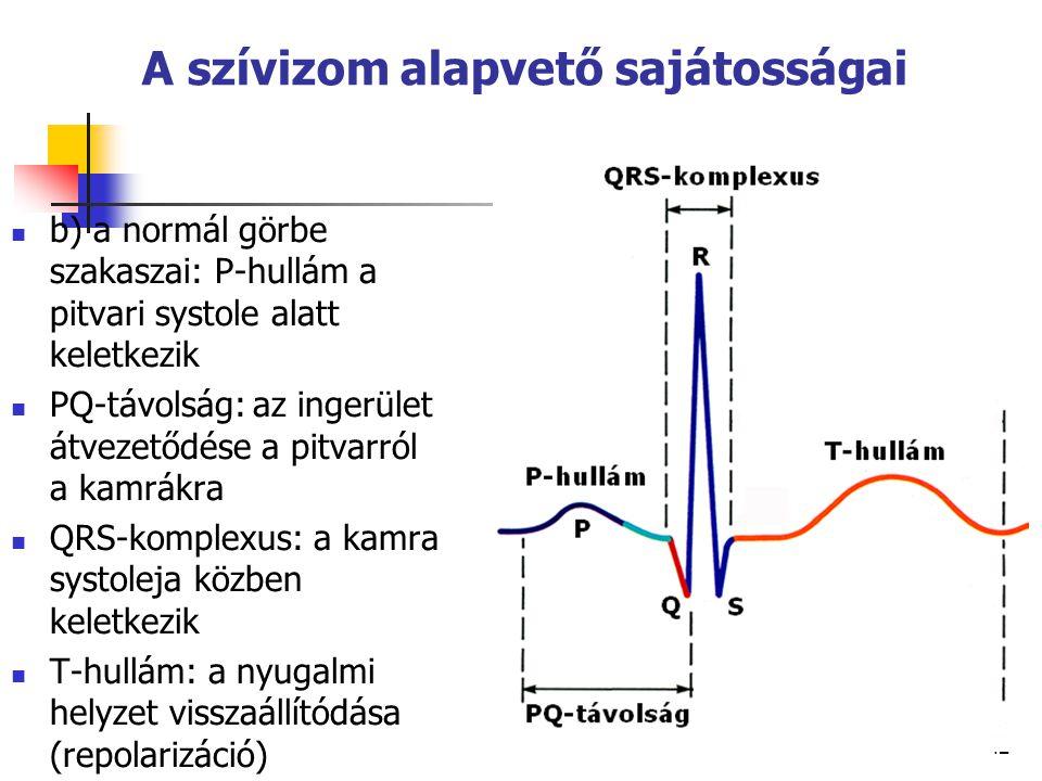 42 A szívizom alapvető sajátosságai b) a normál görbe szakaszai: P-hullám a pitvari systole alatt keletkezik PQ-távolság: az ingerület átvezetődése a