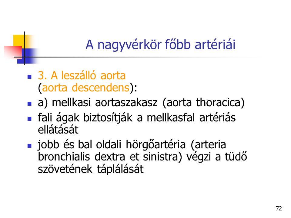 72 A nagyvérkör főbb artériái 3. A leszálló aorta (aorta descendens): a) mellkasi aortaszakasz (aorta thoracica) fali ágak biztosítják a mellkasfal ar