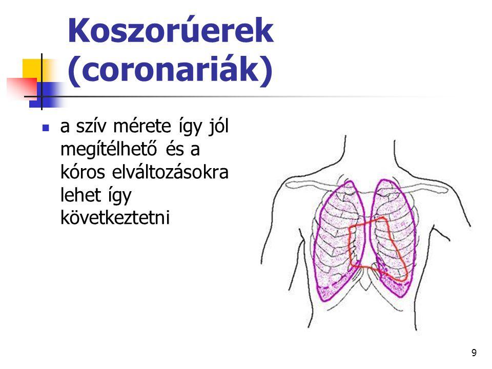 60 reflexes szabályozás: az aorta és a carotis communis falában levő nyomásérzékelő (baro) receptorok feszülése → inger → vasomotor központ → szabályozás (az erek fala tágul vagy szűkül)