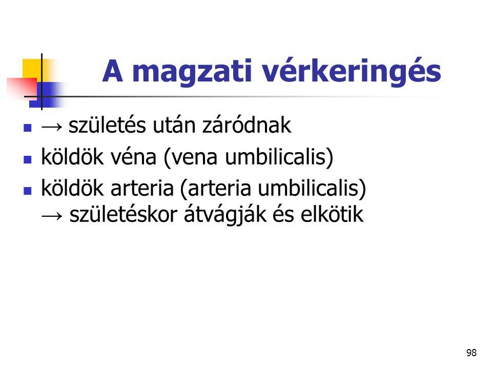 98 A magzati vérkeringés → születés után záródnak köldök véna (vena umbilicalis) köldök arteria (arteria umbilicalis) → születéskor átvágják és elköti