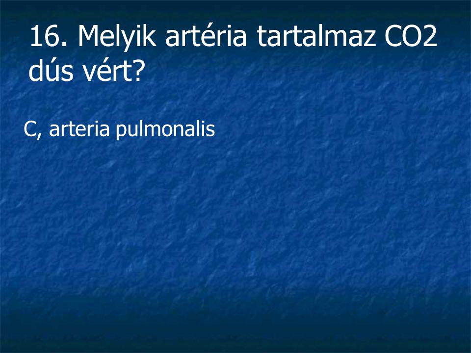 16. Melyik artéria tartalmaz CO2 dús vért? C, arteria pulmonalis