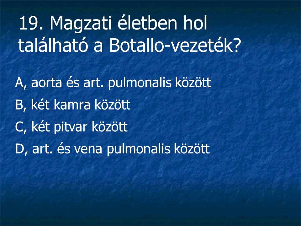 19.Magzati életben hol található a Botallo-vezeték.