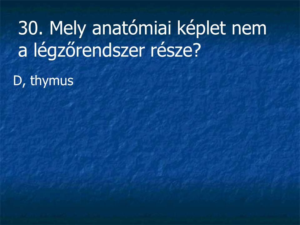 30. Mely anatómiai képlet nem a légzőrendszer része? D, thymus