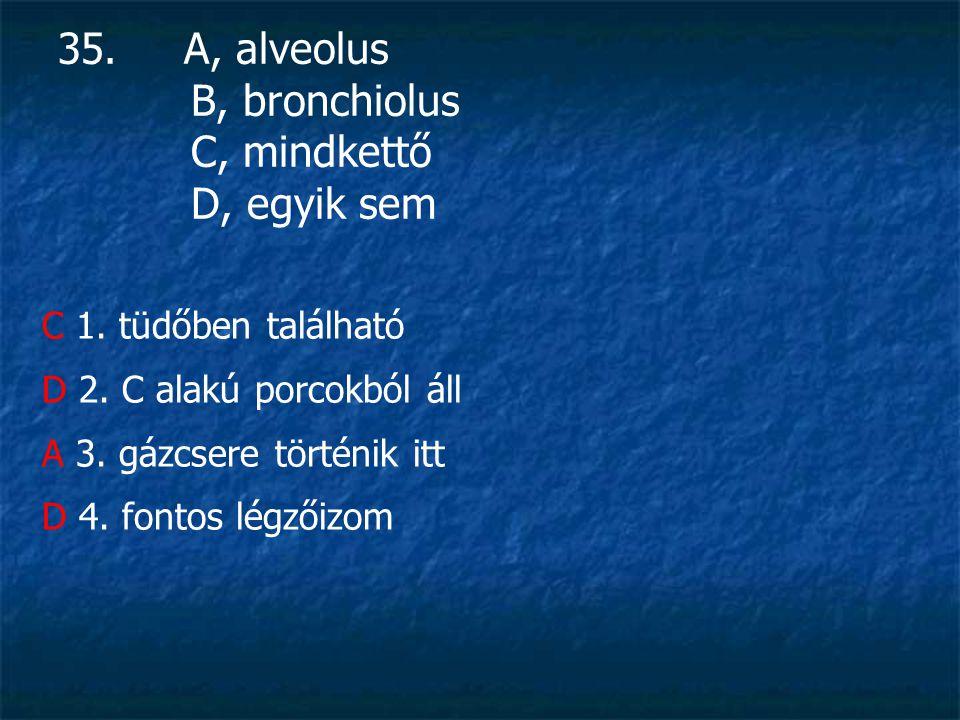 35.A, alveolus B, bronchiolus C, mindkettő D, egyik sem C 1.