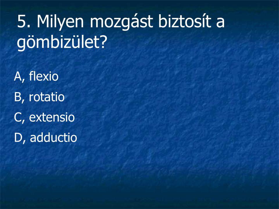 15. Melyek a nyirokszervekben termelődő alakos elemek? D, lymphocyták