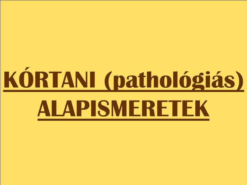 KÓRTANI (pathológiás) ALAPISMERETEK