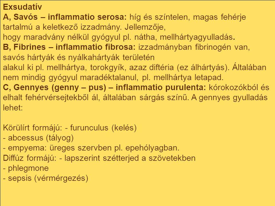 Exsudatív A, Savós – inflammatio serosa: híg és színtelen, magas fehérje tartalmú a keletkező izzadmány. Jellemzője, hogy maradvány nélkül gyógyul pl.