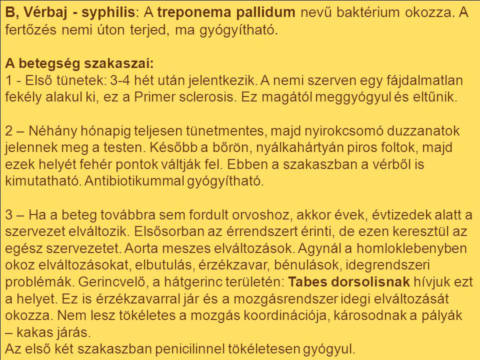 B, Vérbaj - syphilis: A treponema pallidum nevű baktérium okozza. A fertőzés nemi úton terjed, ma gyógyítható. A betegség szakaszai: 1 - Első tünetek: