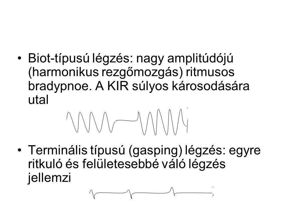 Biot-típusú légzés: nagy amplitúdójú (harmonikus rezgőmozgás) ritmusos bradypnoe. A KIR súlyos károsodására utal Terminális típusú (gasping) légzés: e
