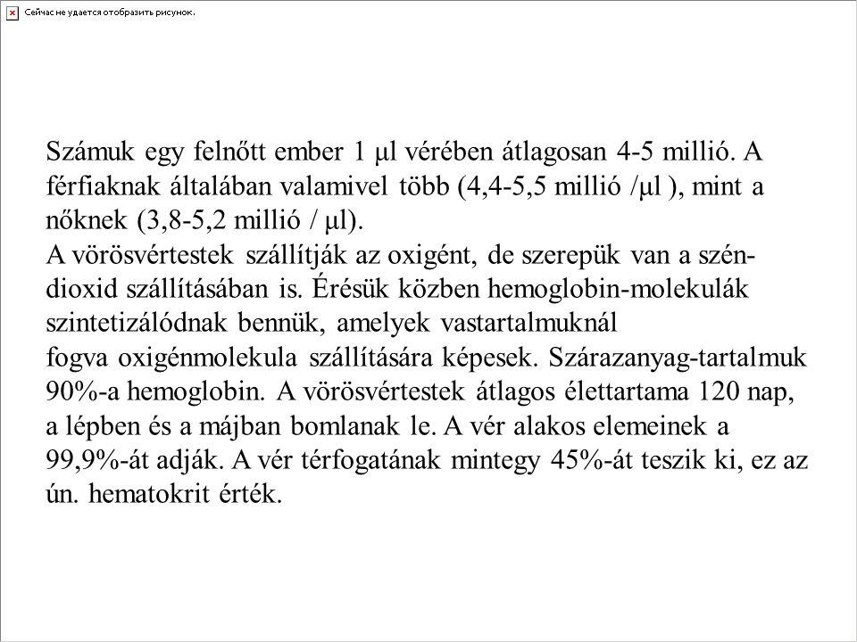 Számuk egy felnőtt ember 1 μl vérében átlagosan 4-5 millió. A férfiaknak általában valamivel több (4,4-5,5 millió /μl ), mint a nőknek (3,8-5,2 millió