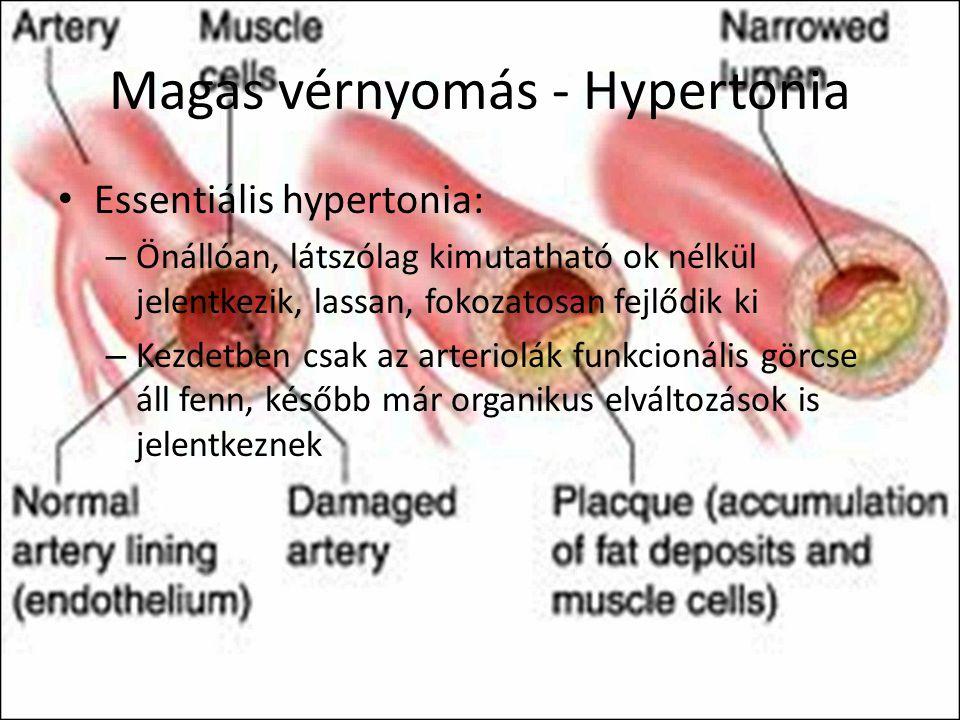 Magas vérnyomás - Hypertonia Essentiális hypertonia: – Önállóan, látszólag kimutatható ok nélkül jelentkezik, lassan, fokozatosan fejlődik ki – Kezdet