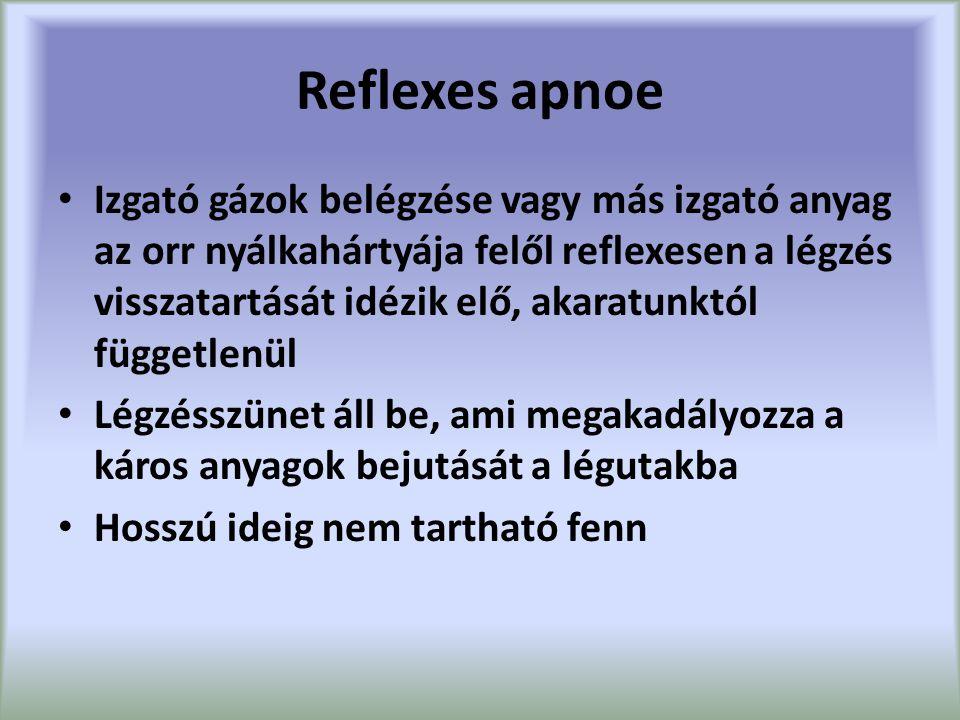 Reflexes apnoe Izgató gázok belégzése vagy más izgató anyag az orr nyálkahártyája felől reflexesen a légzés visszatartását idézik elő, akaratunktól függetlenül Légzésszünet áll be, ami megakadályozza a káros anyagok bejutását a légutakba Hosszú ideig nem tartható fenn