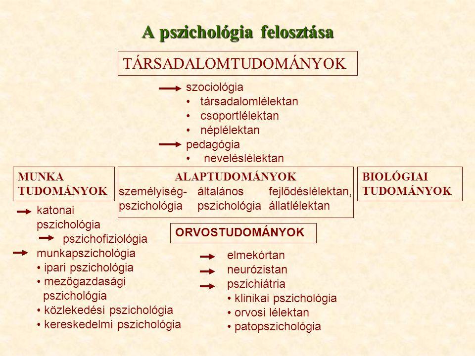 A pszichológia felosztása TÁRSADALOMTUDOMÁNYOK szociológia társadalomlélektan csoportlélektan néplélektan pedagógia neveléslélektan MUNKA TUDOMÁNYOK A