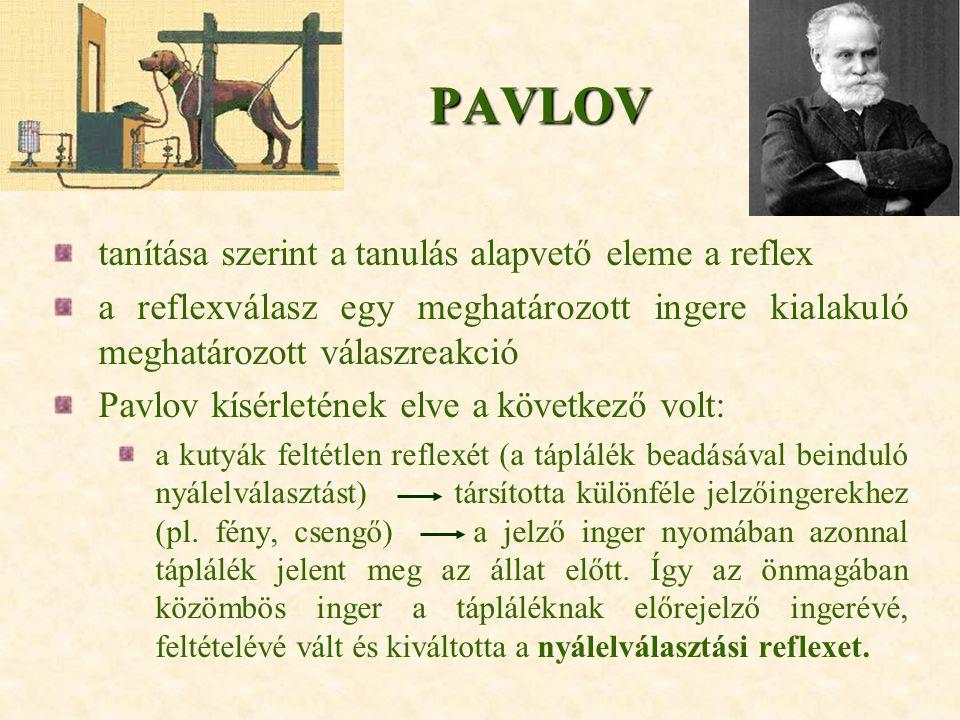 PAVLOV tanítása szerint a tanulás alapvető eleme a reflex a reflexválasz egy meghatározott ingere kialakuló meghatározott válaszreakció Pavlov kísérle