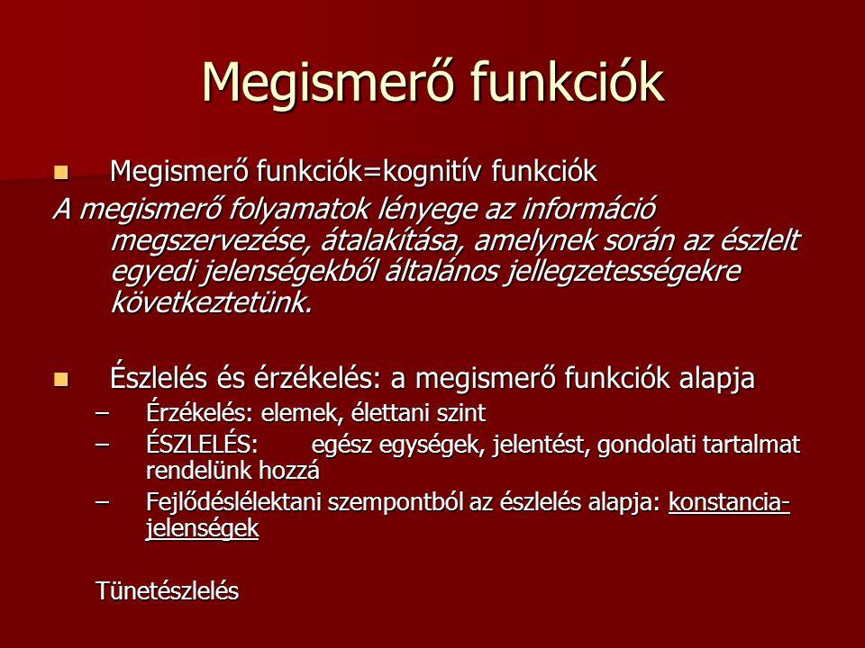 Megismerő funkciók Megismerő funkciók=kognitív funkciók Megismerő funkciók=kognitív funkciók A megismerő folyamatok lényege az információ megszervezés
