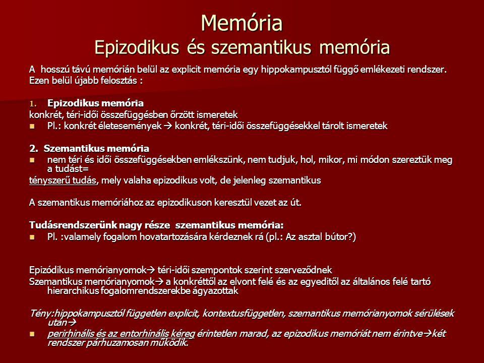 Memória Epizodikus és szemantikus memória A hosszú távú memórián belül az explicit memória egy hippokampusztól függő emlékezeti rendszer. Ezen belül ú